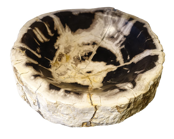 Indonesia Petrified Wood Bowl