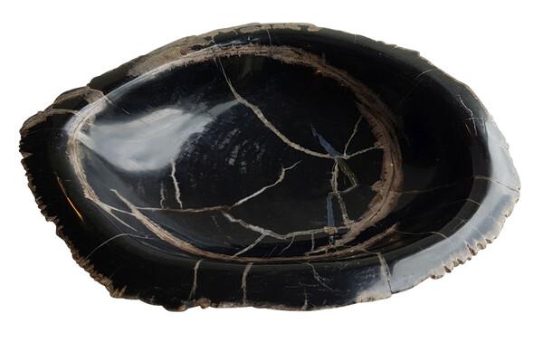 Indonesian Petrified Wood Bowl