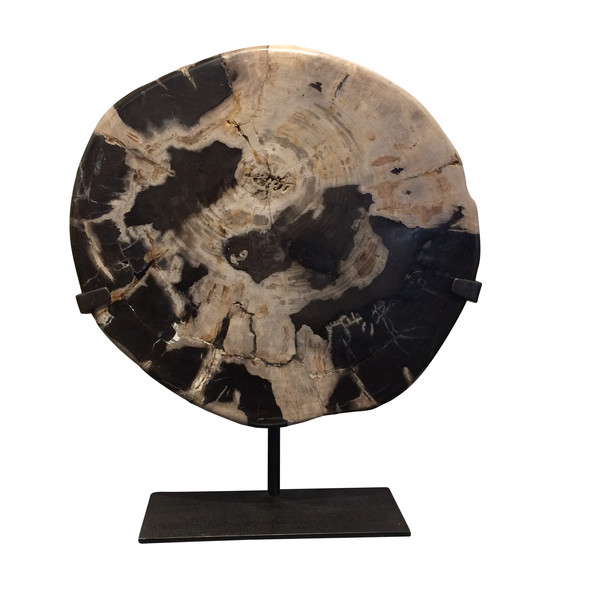 Contemporary Indonesian Petrified Wood Slice Sculpture