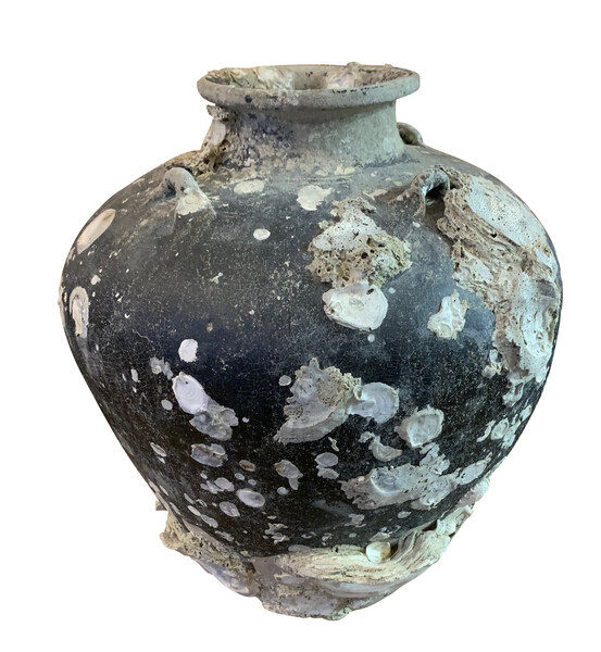 17thc Thailand  Large Barnacle Covered Jug