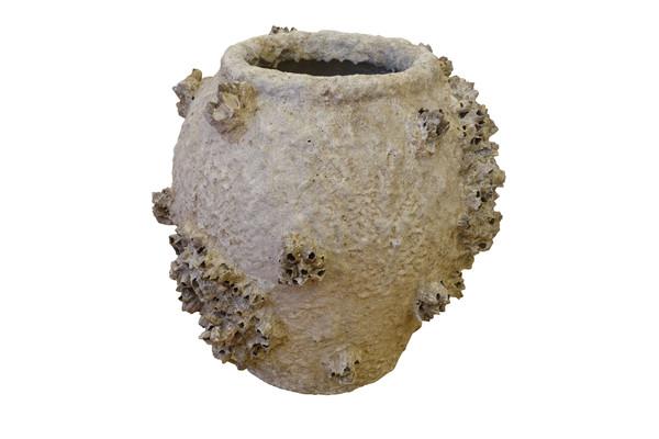 French Barnacle Vase