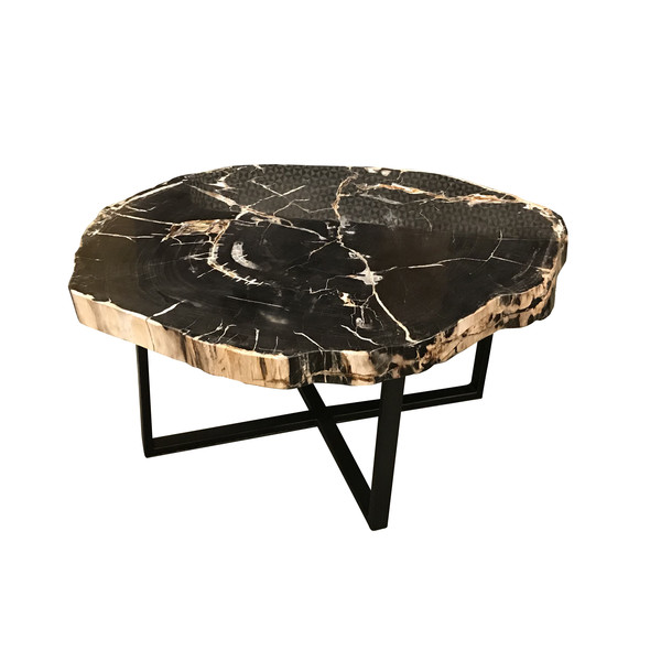 Contemporary Indonesian XL Petrified Wood Coffee Table