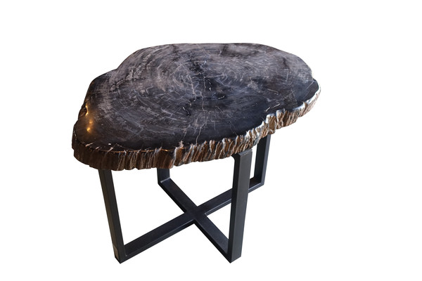 Contemporary Indonesian Sliced Petrified Wood Side Table