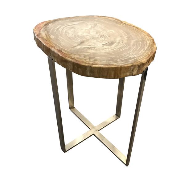 Indonesian Sliced Petrified Wood Side Table Nickel Base